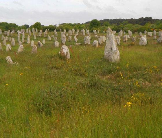 Standing stones of Carnac